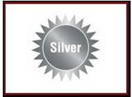 Eco School, Silver Award
